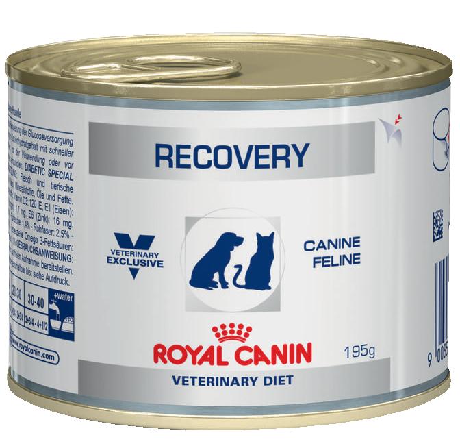Приют на Неве. Royal Сanin Recovery - Роял Канин Рековери Диета для собак и кошек в период анорексии, банка, 195 г