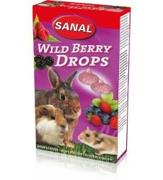 SANAL Дропсы для грызунов с лесными ягодами 45 гр