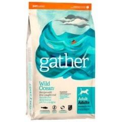 GATHER Wild Ocean Fish DF - Гатер корм для собак с океанической рыбой