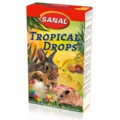 SANAL Дропсы для грызунов с тропическими фруктами 45 гр